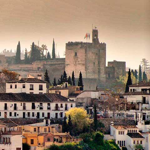 La Productora gestiona los comedores escolares de Granada